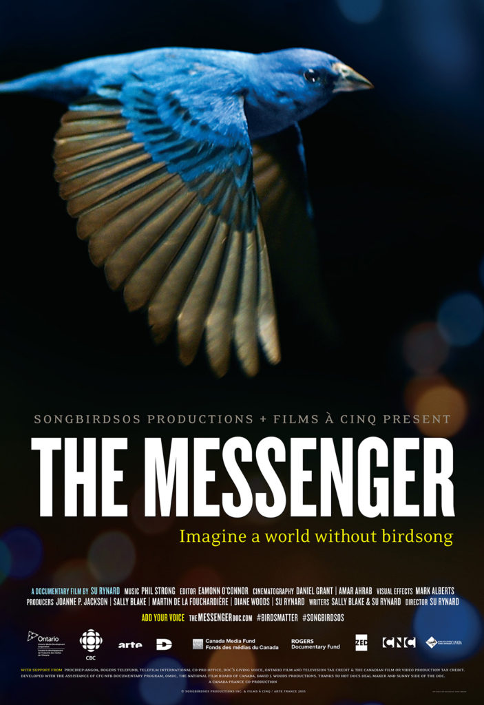 Documentary, The Messenger poster